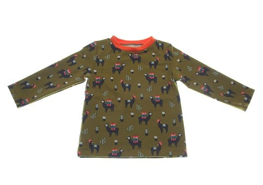 Bluse-1-alpaca-80-.jpg