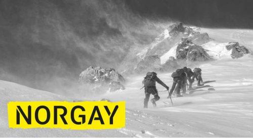 Norgay Agentur für digitalen Aufstieg