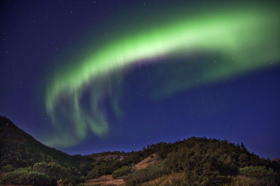 Nordlys og vintertur med North Travel