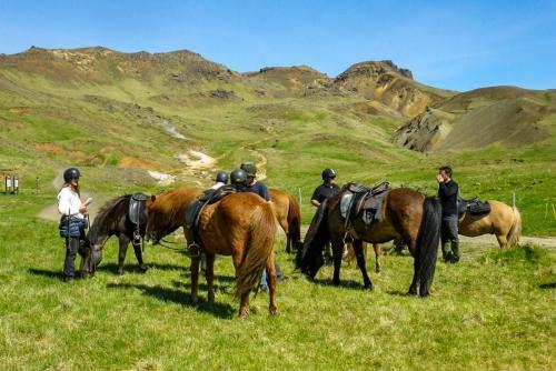 Ridetur på Islandske heste. Skøn oplevelse.
