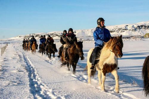 Rideferie om vinteren