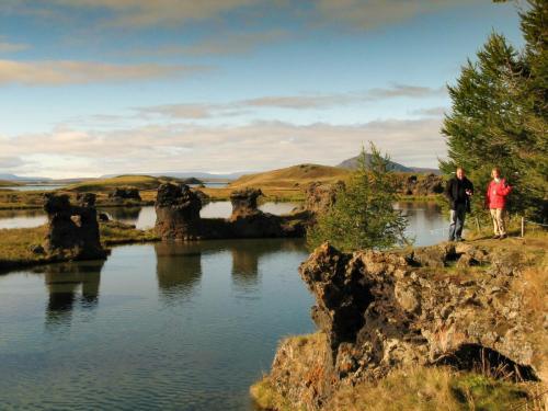 Mývatn søen i Nordisland
