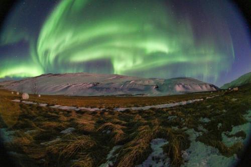 Nordlys i Island