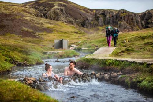 En varm bæk i Reykjadalur.