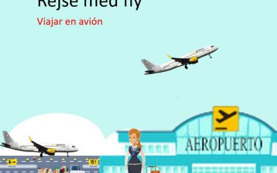 Rejse med fly