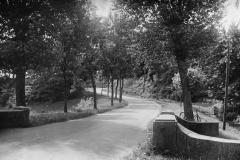 Ladegårdsvej