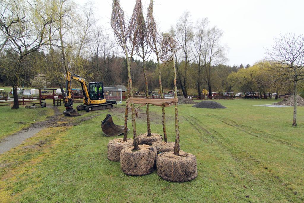 Trädplantering Rinkeby