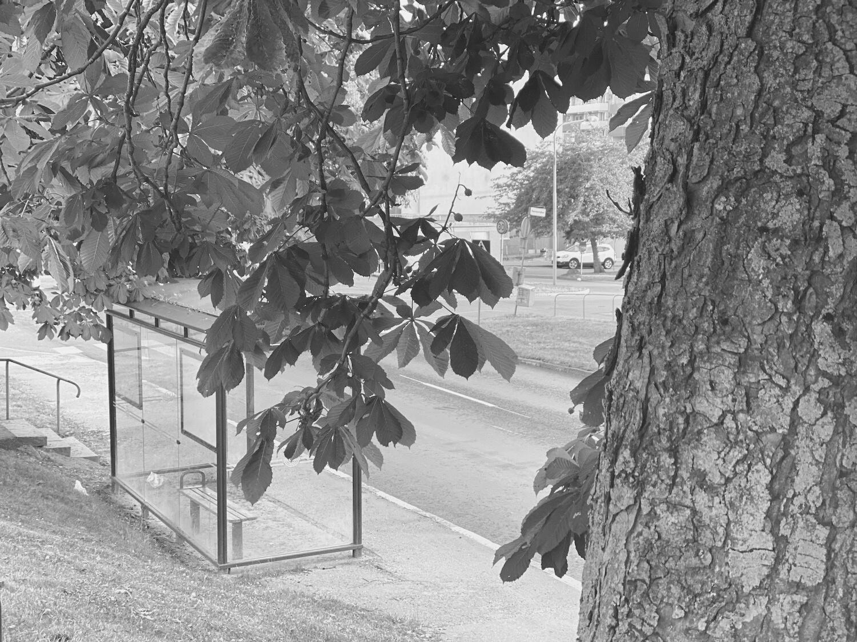 Busshållsplats