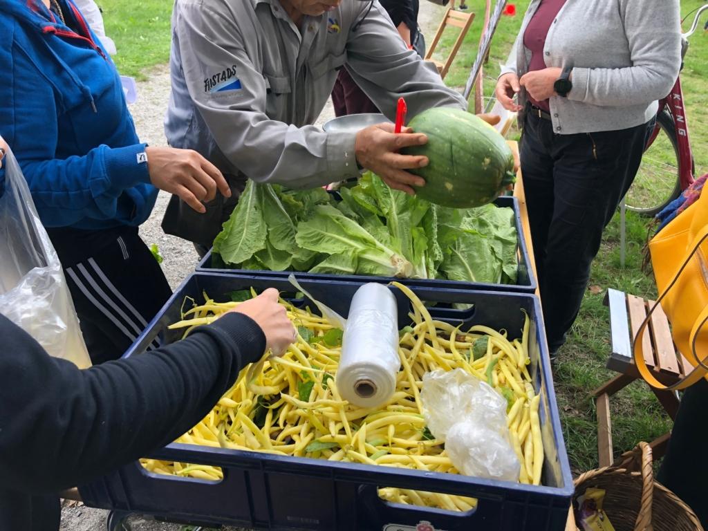 grönsaker till salu