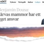 Skärmavbild från svenska dagbladet