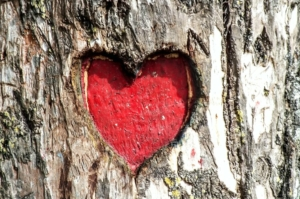 Blodtryk og hjerteproblemer