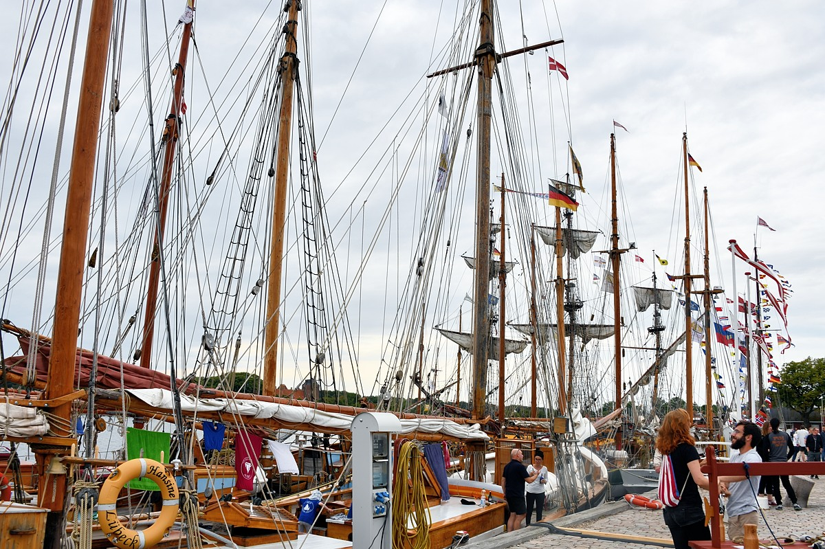 Årets Hajkutter festival og regatta aflyses