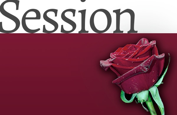 Session - Ny Tids Healing