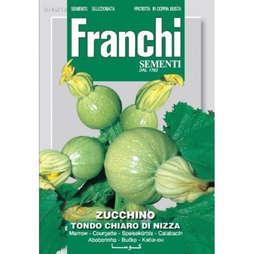 Ronde courgette   D146-18