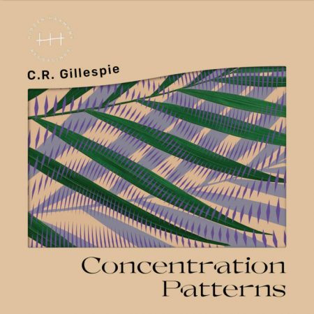 C.R. Gillespie | Concentration Patterns | Hidden Harmony Recordings