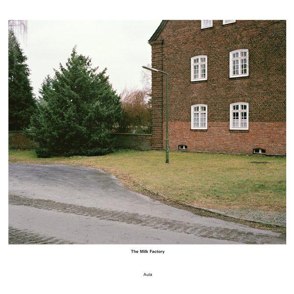 The Milk Factory   Aula   Vinyl