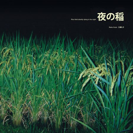 Reido Kudo | Rice Field Silently Riping in The Night LP | TAL