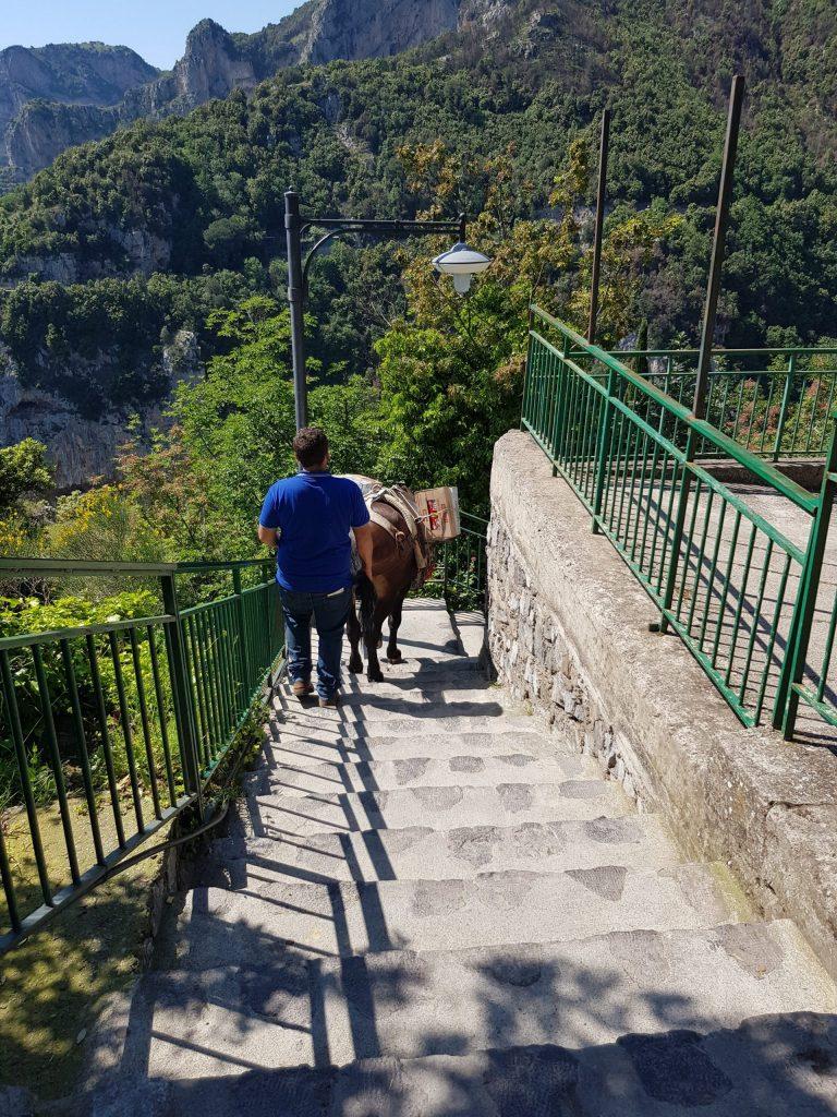 Sorrento vandretur - Nocelle