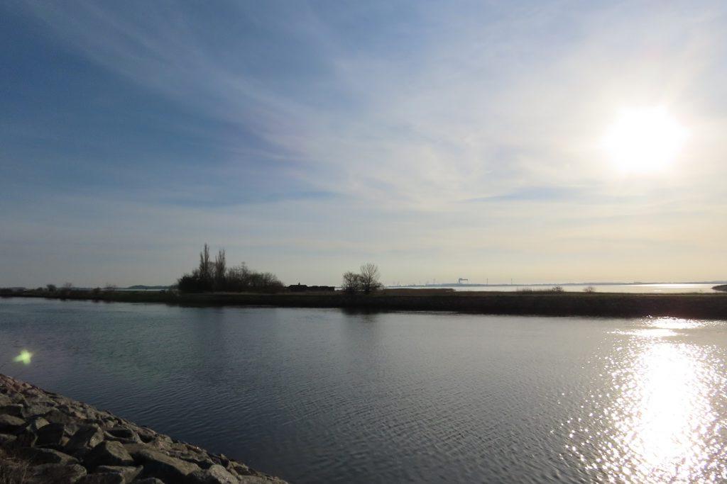 Odense Kanal - Sorthusene