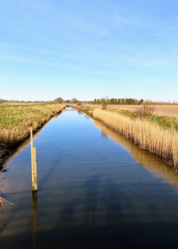 Odense Kanal - Lunde å