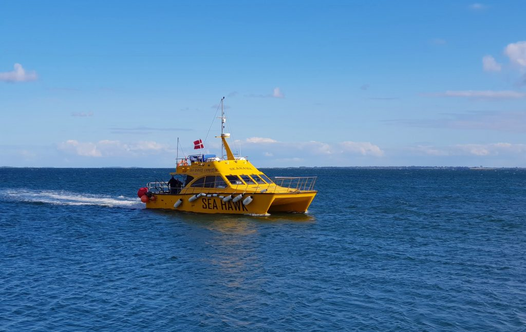 Sea Hawk'en, den lille gule katamaran