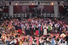 Oider Wiesn Ball 2018