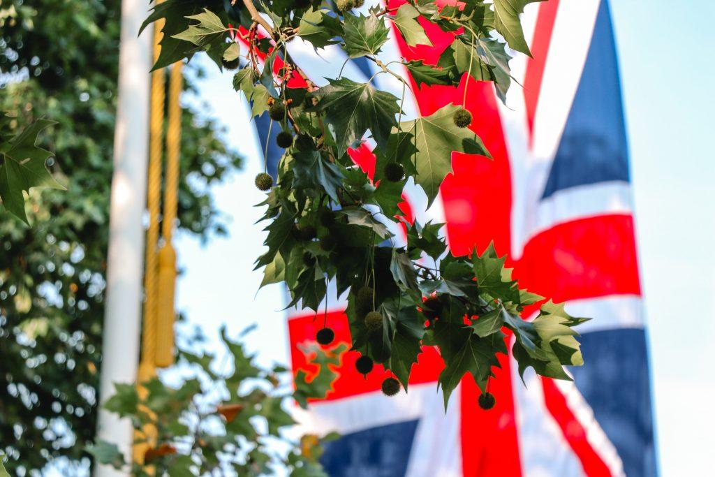 Et stort engelsk flagg bak noen blader.