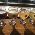 Fire glass med øl. De er i ulik farge og derfor ulik stil.