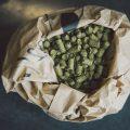 Bilde av en papirbag med humle