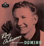 "The Cat Called Domino 10"" Vinyl"