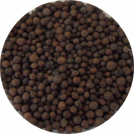 Piment de Jamaique
