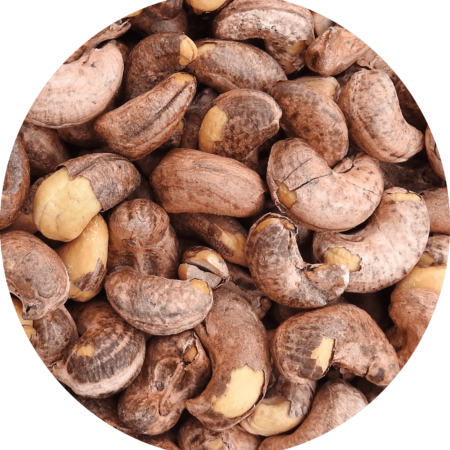 Cashew testa