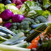 5 kosttilskud som er essentielle for vores helbred