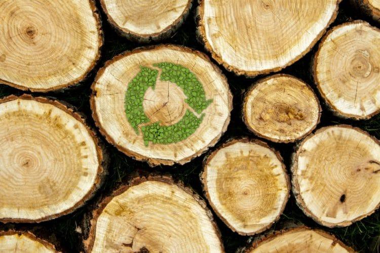 Bæredygtigt FCS træ stablet i naturen