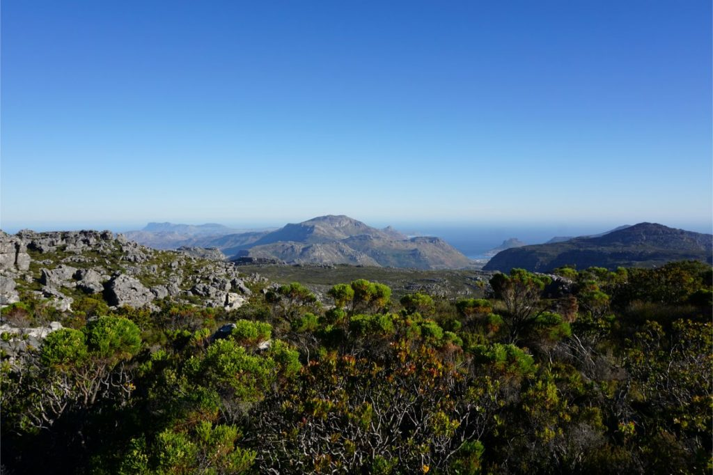 view-top-table-mountain