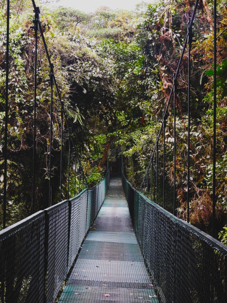 One Second- Costa Rica- Fôret de nuages Monteverde-Salvatura Park-Tour canopée