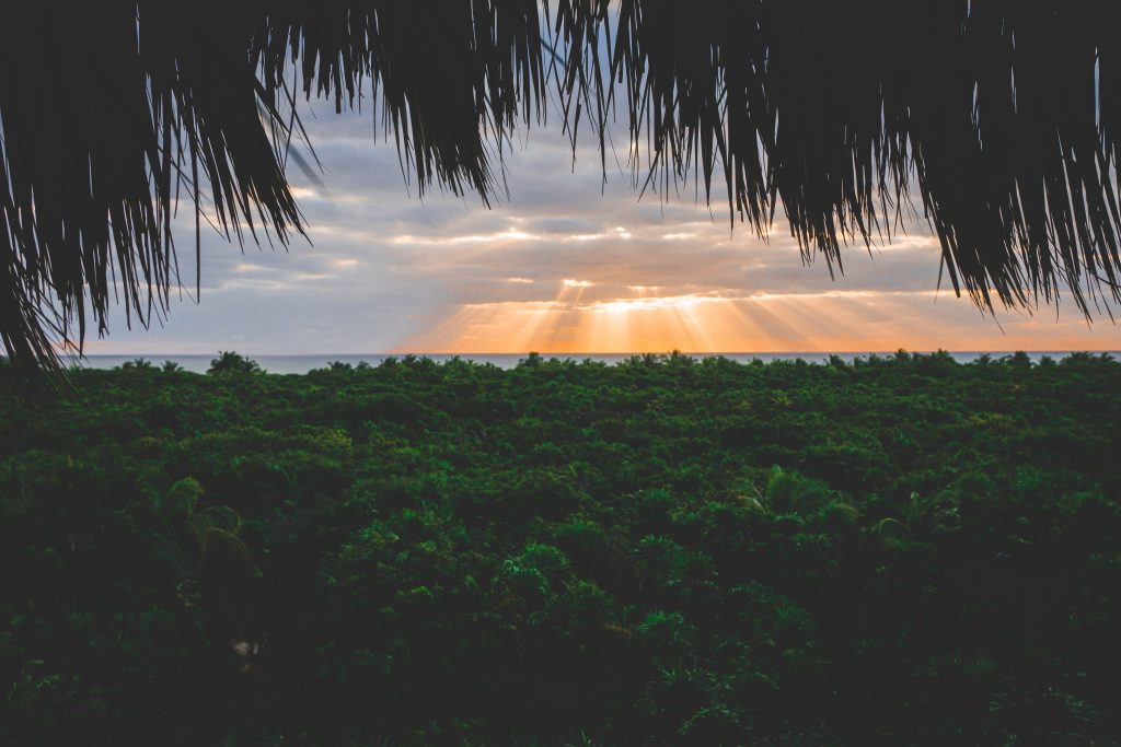 Yucatán off the beaten path itinerary, sunrise above the tropical forest of Sian Ka'an Reserve