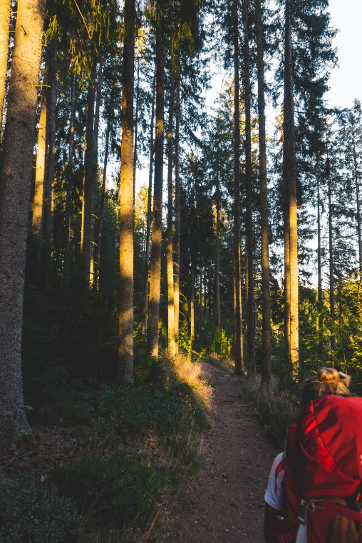 Our road trip in southern Germany in 7 days - starting our hike in the last lights of the day