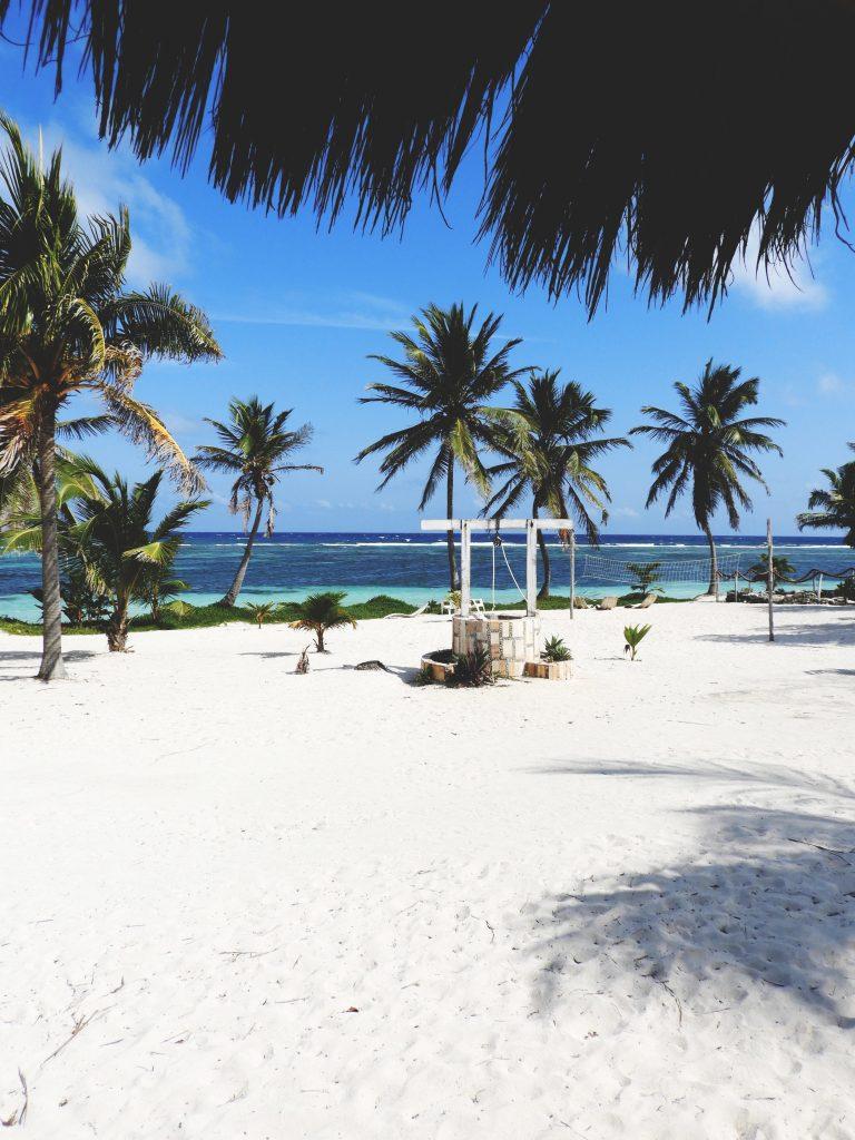 Cocotiers, eau bleu turquoise et sable blanc - Le yucatán en dehors des sentiers battus en seulement 6 jours