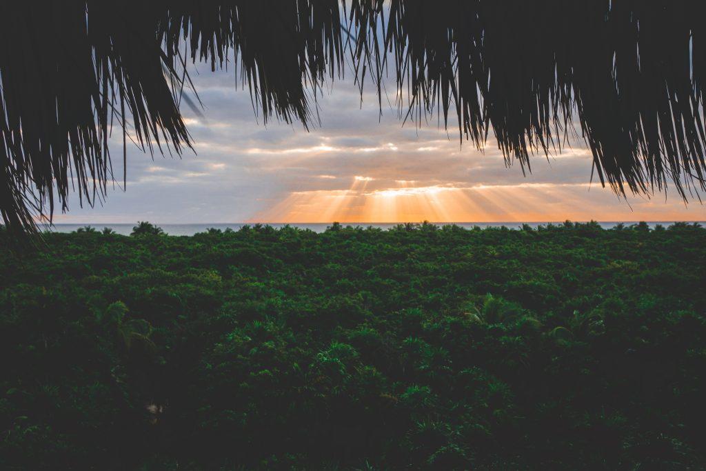 Lever du soleil sur la forêt tropicale de la réserve naturelle de Sian Ka'an - Yucatán - One Second Journal