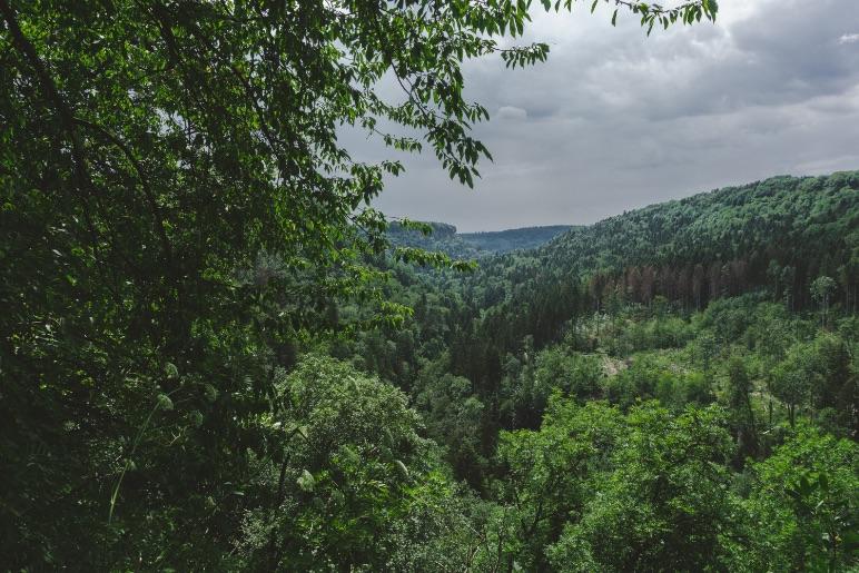 Le sac à dos idéal pour une randonnée dans la forêt noire - One Second Journal blog