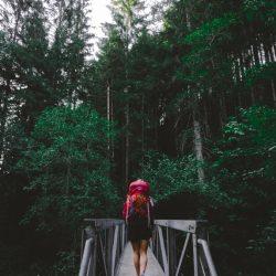 One Second Journal - le sac à dos idéal pour une randonnée dans la forêt noire