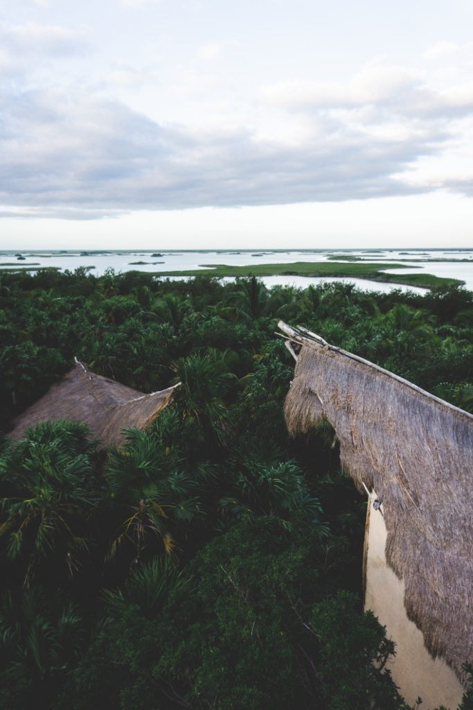 Endless view on Sian Ka'an Reserve - Yucatán, Mexico in pictures