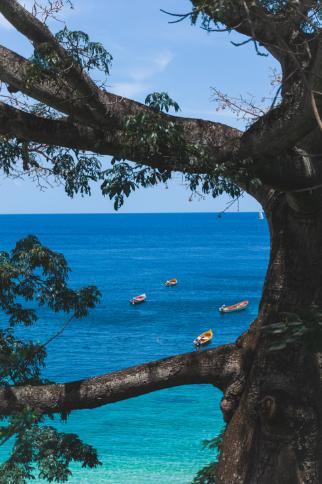 Anse Dufour - Les plus beaux endroits à voir en Martinique - One Second Journal