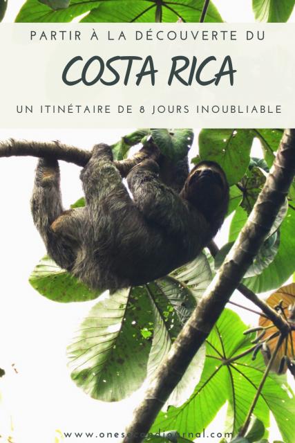 pinterest-paresseux-costa-rica-monteverde