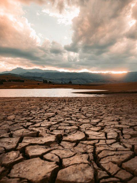 drought-landscape-print-less