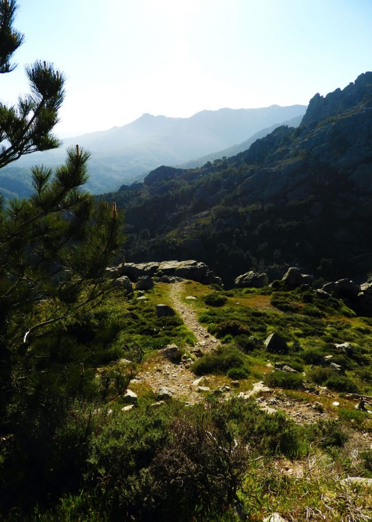 drive-bavella-southern-corsica