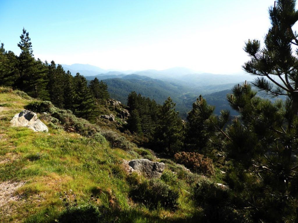 viez-bavella-mountains-corsica-hiking