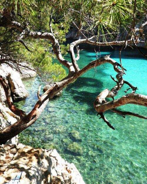 turquoise-water-calanque-en-vau-marseille
