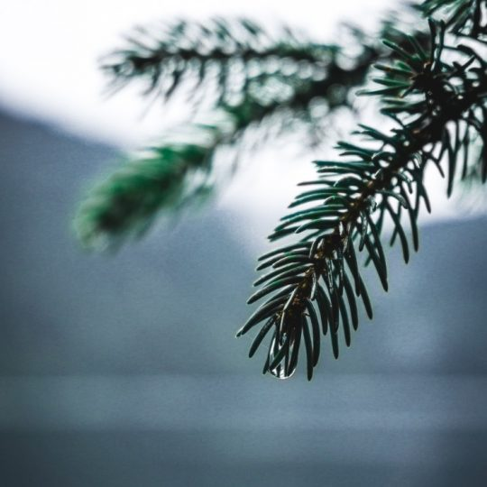 Eibsee Lake - Christmas mood Germany - Coolest sustainable gifts 2020